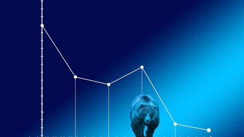 Bear market: existem oportunidades no estado de pessimismo?
