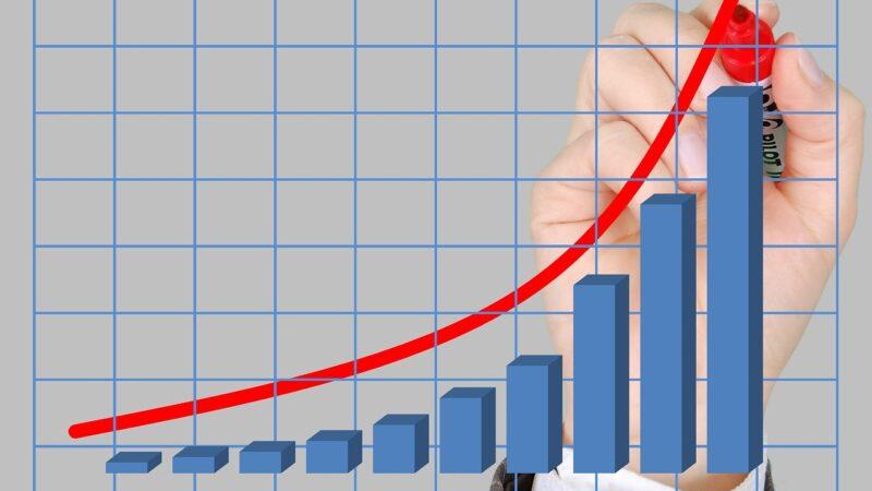 Como a rentabilidade dos investimentos funciona? Encontre a resposta!